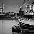Men Fishing At The Port by Eduardo Tavares
