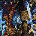 Menacing Teeth - Snow Thrower - Abstract by Barbara Griffin