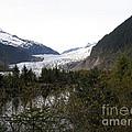 Mendenhall Glacier by Bev Conover