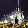 Mendocino Presbyterian Church by Ron Sanford