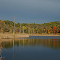 Mendon Ponds by Tracy Winter