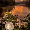 Meramec River At Chouteau Claim by Robert Charity