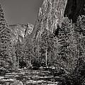 Merced River Yosemite by David Beebe