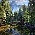 Merced River, Yosemite National Park by Ed Freeman