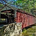 Mercers Mill Covered Bridge by Nick Zelinsky