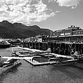 Merchants Wharf In Black And White by Cathy Mahnke