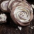 Meringue Rose by Kati Finell