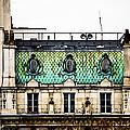 Mermaid Windows by Christi Kraft