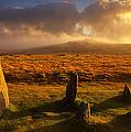 Merrivale Stone Rows by Darren Galpin