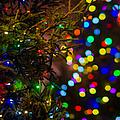 Merry Christmas 2 by Alexander Senin