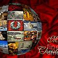 Merry Christmas Globe by Lois Bryan