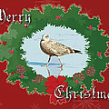 Merry Christmas Greeting Card - Young Seagull by Mother Nature