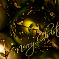 Merry Christmas Greeting by Julie Palencia