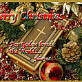 Merry Christmas - John 3 V16 by Terry Wallace