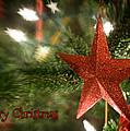 Merry Christmas by Joye Ardyn Durham