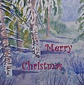 Merry Christmas - Snowy Winter Path by Cascade Colors
