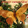 Merry Christmas by Zina Stromberg