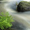 Mersey River Nova Scotia Canada by Scott Leslie