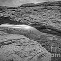 Mesa Arch Sunrise Bw by Michael Ver Sprill