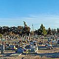 Mesilla Nm Cemetery 3   by Jeff Brunton