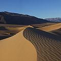Mesquite Dunes Death Valley 1 by Susan Rovira