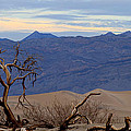 Mesquite Flat Sand Dunes Stovepipe Wells Death Valley by Ed  Riche