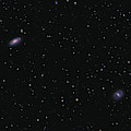 Messier 88 And Messier 91 by Lorand Fenyes