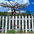 Metal Art Tree Bisbee by Rebecca Korpita