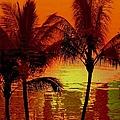 Metallic Sunset by Athala Carole Bruckner