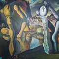 Metamophosis Of Narcissus by Gary Hogben