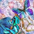 Metamorphosis by Mo T