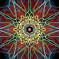 Metamorphosis by Uma Swaminathan