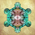 Metatron's Cube by Filippo B