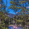 Methow River Log Jam by Omaste Witkowski