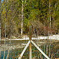 Methow River Springtime by Omaste Witkowski