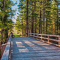 Methow Valley Community Trail At Wolf Creek Bridge by Omaste Witkowski