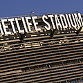 Metlife Stadium by Susan Candelario