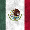 Mexico Flag by World Art Prints And Designs
