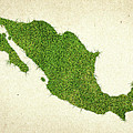 Mexico Grass Map by Aged Pixel