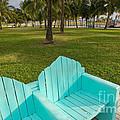 Miami Beach Colors by Thomas Levine