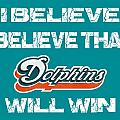 Miami Dolphins I Believe by Joe Hamilton
