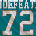 Miami Dolphins Undefeated Season by Joe Hamilton