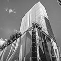 Miami Downtown Buildings - Miami - Florida - Black And White by Ian Monk