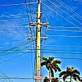 Miami Key West by Abby D Santiago