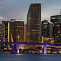Miami Skyline by Stefan Mazzola