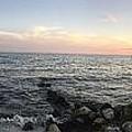 Miami Sunset by Cassandra  Cardenas