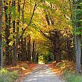 Michigan Back Roads by Stephanie Kripa