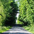 Michigan Country Roads 43 by Sylvia Herrington