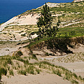 Michigan Sleeping Bear Dunes by Christina Rollo