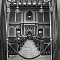 Michigan State Senate  by John McGraw